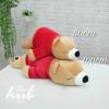 หมีขี้เซา เสื้อแดง