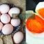 ไข่เค็มสมุนไพร สูตรไข่แดงเค็มมัน thumbnail 3